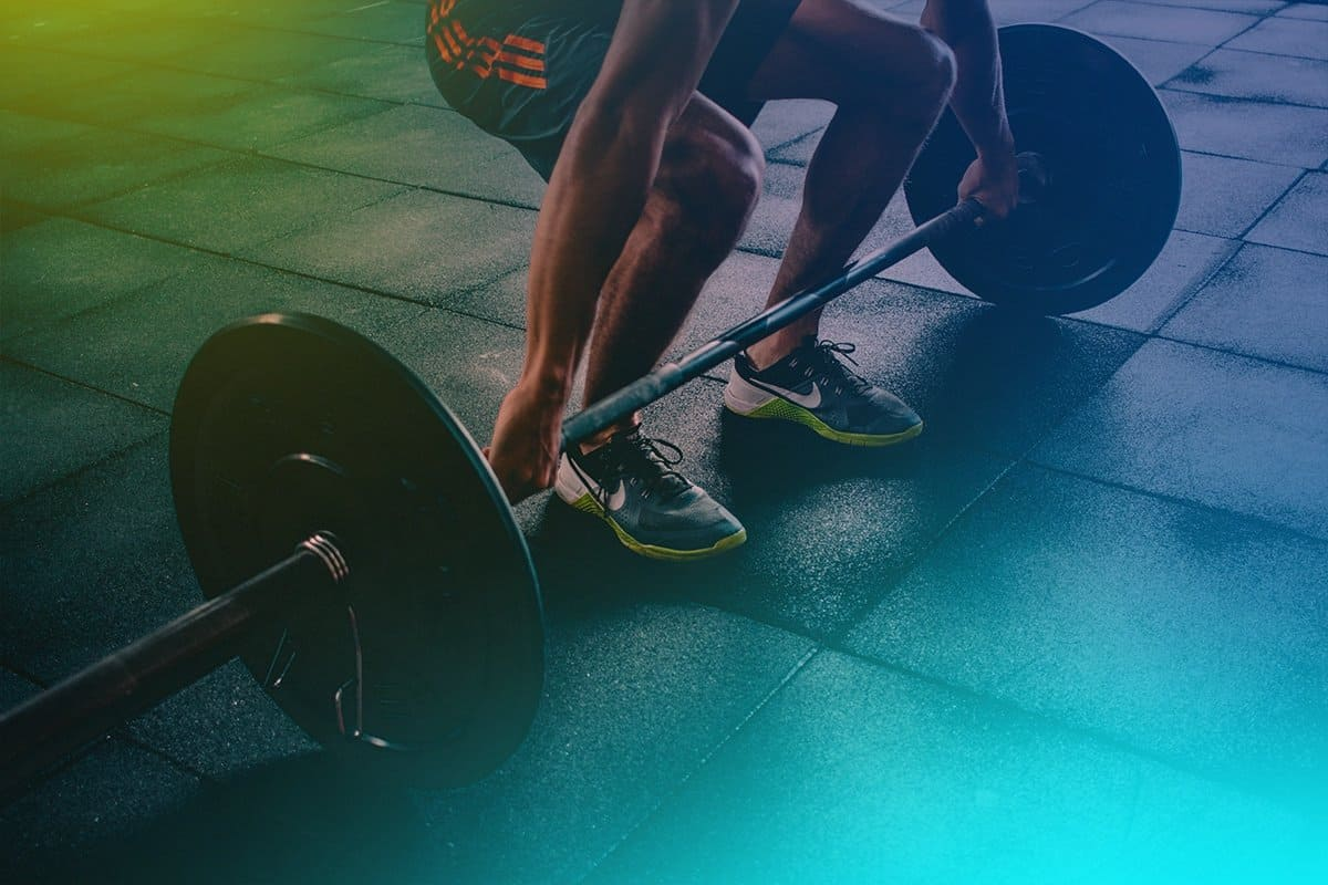 stellapop-exercise-power-lifting-business